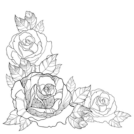 illustration with outline rose flower and foliage isolated on white background. Floral elements with roses and leaves in contour style for summer design and coloring book. Corner composition. Vectores
