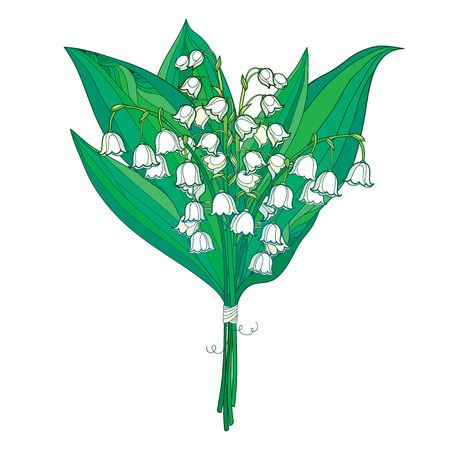 Bouquet with outline white Lily of the valley or Convallaria flowers and green leaves isolated on white.