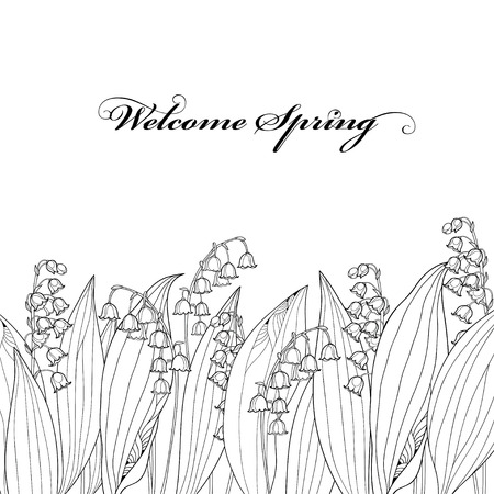 概要スズランとの国境または Convallaria 花と葉が分離されました。