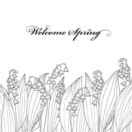 Frontera con contorno Lily of the valley o Convallaria flor y hojas aisladas. Foto de archivo - 75343902