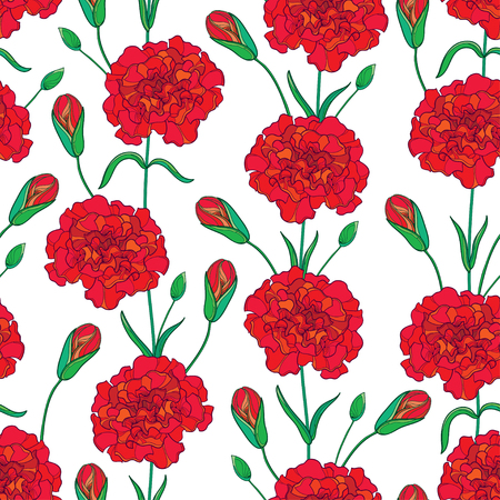 Seamless pattern with outline Carnation or Clove flowers, bud and leaves in red and green.
