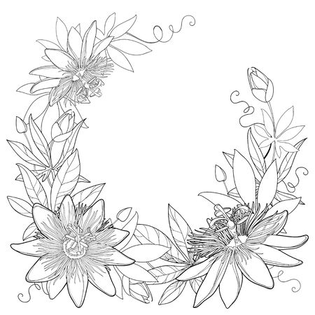 Wreath with outline tropical Passiflora or Passion flowers, bud, leaves and tendril. 向量圖像