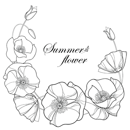 Round wreath with outline Poppy flower and bud in black isolated on white background. Floral elements in contour style with poppy for summer design and coloring book. Symbol of Remembrance Day.