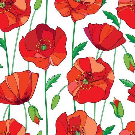 概要赤いケシの花、つぼみ、白い背景の上の緑の葉とのシームレスなパターン。夏デザインの輪郭のスタイルの華やかなポピーと優雅な花の背景。  イラスト・ベクター素材
