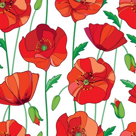 Seamless pattern with outline red Poppy flower, bud and green leaves on the white background. Elegance floral background with ornate poppies in contour style for summer design. Stok Fotoğraf - 79033526