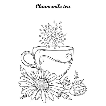 camomile tea: Cup of Chamomile herbal tea isolated on white background. Outline Chamomile flower and ornate petal in contour style for summer design, medicine, naturopathy, homeopathy, coloring book.