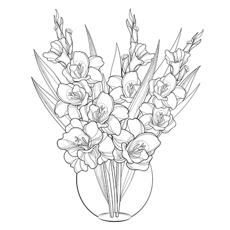 Bouquet with Gladiolus or sword lily in vase. Flower bud and leaf in black isolated on white background. Floral elements in contour style with gladioli for summer design and coloring book.