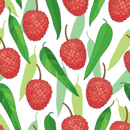 Motif sans couture avec le contour Lychee rouge rouge ou le fruit Litchi et la feuille verte sur le fond blanc. Modèle de fruits avec plante subtropicale dans le style de contour pour un design d'été exotique. Banque d'images - 81308363