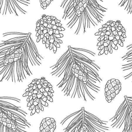 Seamless pattern with outline Scots pine or Pinus sylvestris. Pine and cones in black on the white background. Pattern in contour style with coniferous for Christmas design and coloring book.