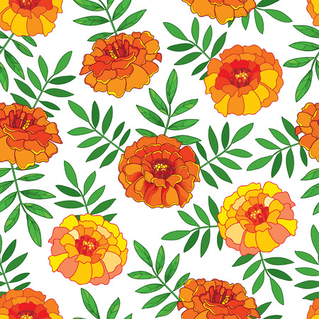Seamless pattern with outline orange Tagetes or Marigold flower and green leaves on the white background. Floral pattern in contour style with ornate Marigold for summer design.