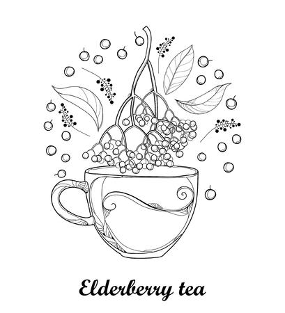 Cup of Sambucus nigra or black elder or elderberry tea.