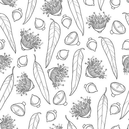 概要ユーカリは、ユーカリまたはタスマニア ブルー ・ ガム、フルーツ、花、夏デザインまたは着色本のユーカリのパターンは、白地に黒で葉の反
