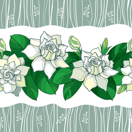 Seamless pattern with outline Gardenia flower in pastel color. Ornate bud and green leaves on the white background. Floral pattern with Gardenia in contour style for summer design.