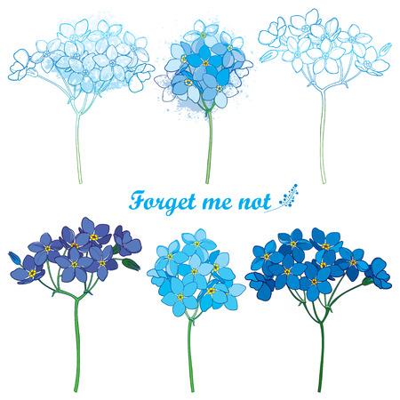 Set con contorno Non ti scordar di me o Myosotis mazzo di fiori in blu pastello isolato su sfondo bianco. Pianta selvatica Non ti scordar di me in stile contorno per design primaverile o arredamento romantico.
