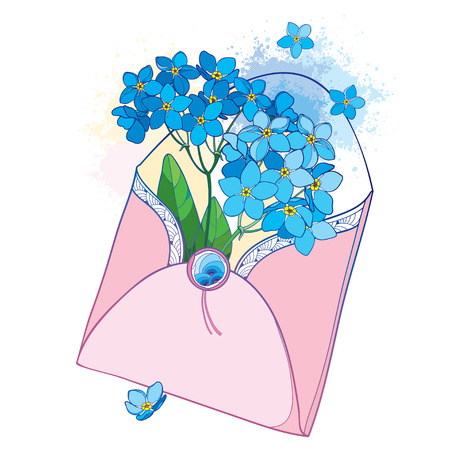 Bouquet with outline blue Forget me not or Myosotis flower in an open pink craft envelope. Illustration