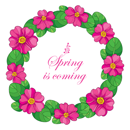 Round wreath with outline pink Primula or Primrose flower and green leaves on white background. Composition with blooming Primula in contour style for spring design.