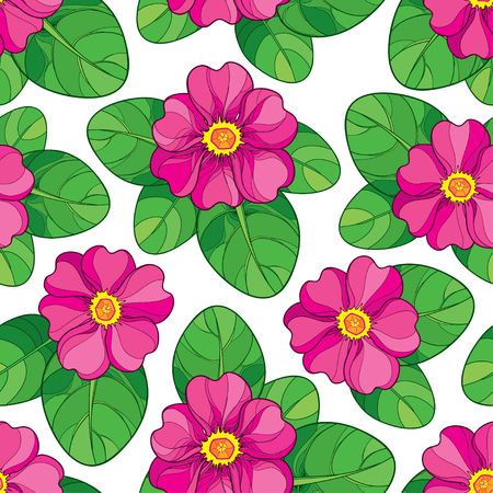 Seamless pattern with outline pink Primula or Primrose flower and green leaves on the white background. Elegance floral pattern with pink Primula in contour style for spring design. Imagens - 92128224