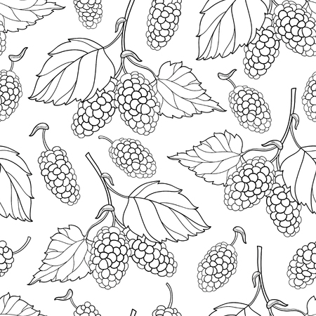 Seamless pattern with outline Mulberry or Morus bunch with berry and leaf in black on the white background.