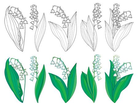 Set mit Umriss Maiglöckchen oder Convallaria Blüten und Blätter.