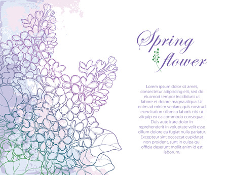 Bouquet with outline Lilac or Syringa flower, bud and ornate leaf on textured background in purple pastel colors. Greeting corner composition of Lilac bunch in contour style for spring design.