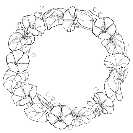 Round wreath with outline Ipomoea or Morning glory flower, leaf and bud in black isolated on white background. Perennial climbing plant in contour style for summer design and coloring book.