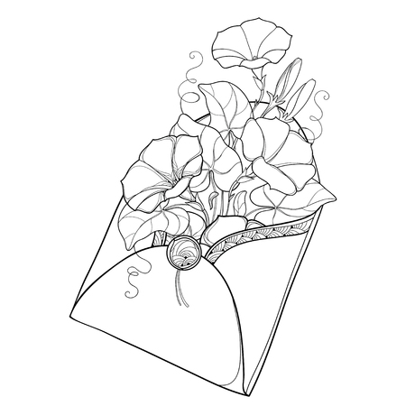 Bouquet with outline Ipomoea or Morning glory flower and leaf in open craft envelope in black isolated on white background. Ornate floral for romantic design or coloring book in contour style.