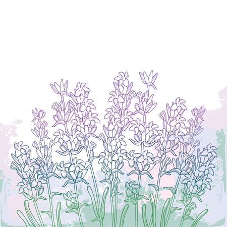 Bouquet with outline Lavender flower bunch, bud and leaves on the textured pastel violet background. Ornate fragrance Lavender herb in contour style for summer decor.