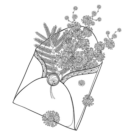 Bouquet with outline flowers and leaf in black open craft envelope isolated on white background. Ornate Mimosa for spring design and coloring book.
