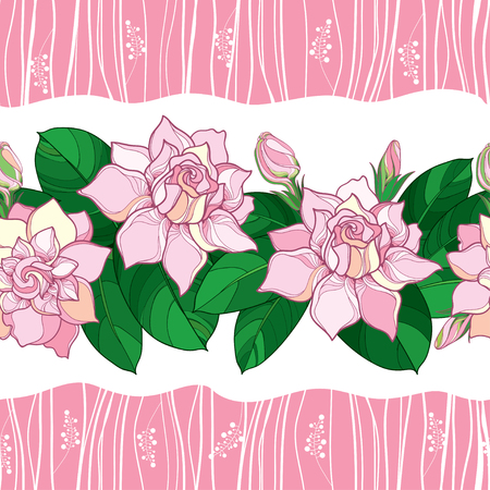 Seamless pattern with outline Gardenia flower in pastel pink color. Ornate bud and green leaves on the white background. Floral pattern with pink Gardenia in contour style for summer design.