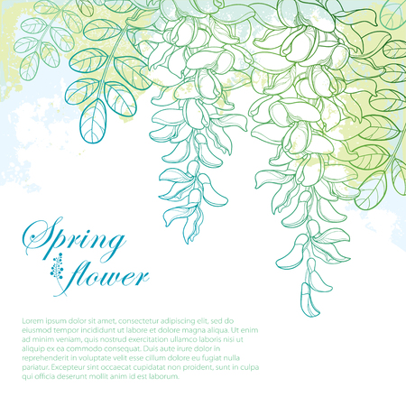 Spring flowers and leaves on pastel background.