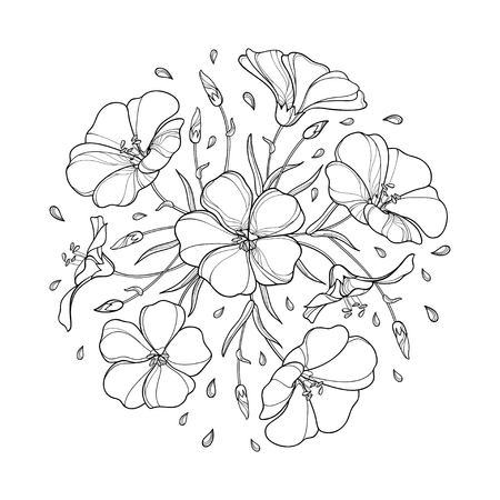 Round bouquet with outline Flax plant or Linseed or Linum. Flower bunch, bud and leaf in black isolated on white background. Ornate Flax in contour style for summer design and coloring book. Illustration