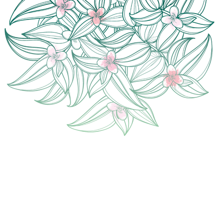 Bouquet with outline Tradescantia or Inch plant or Wandering Jew flower. Flower and leaf in pastel green and pink isolated on white background. Houseplant in contour style for summer design.