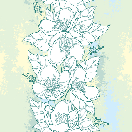 Seamless pattern with outline Jasmine flower bunch, bud and ornate leaf in white and green on the textured pastel background. Vertical border with jasmin in contour style for summer design.