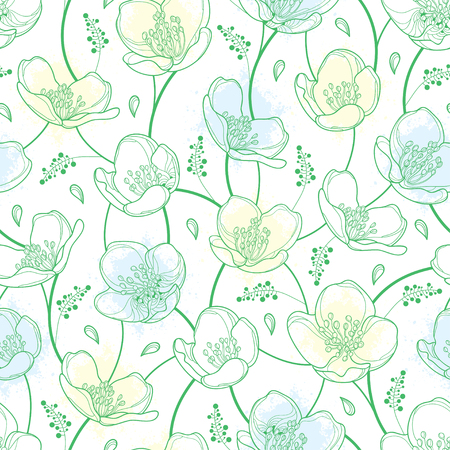 Seamless pattern with outline Jasmine flowers in pastel white and green on the white background. Elegance floral background with jasmin in contour style for summer design.