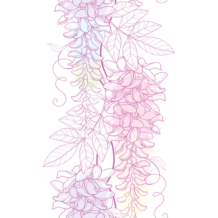 Seamless pattern with outline Wisteria or Wistaria flower bunch, bud and leaf in pastel pink and purple on the white background. Floral border with blooming contour Wisteria for summer design. Illustration