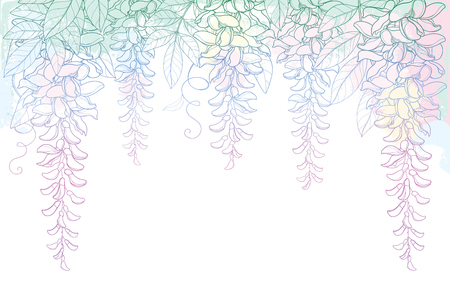 Arch or tunnel of outline Wisteria or Wistaria flower bunch, bud and leaf in pastel pink on the white background. Blossom climbing plant Wisteria in contour for spring design. Vectores