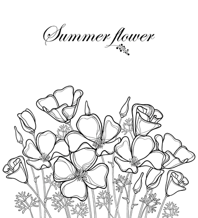 Bouquet of outline California poppy flower or California sunlight or Eschscholzia, leaf, bud and flower in black isolated on white background. Contour poppy for summer design or coloring book.