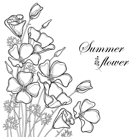 Corner bouquet of outline California poppy flower or California sunlight or Eschscholzia, leaf and bud in black isolated on white background. Contour poppy for summer design or coloring book.