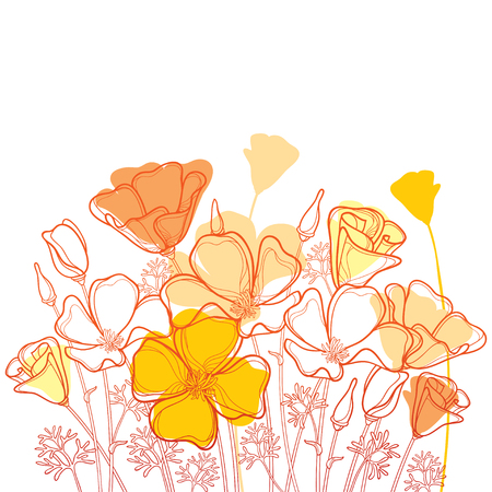 Bouquet with outline orange California poppy flower or California sunlight or Eschscholzia, leaf and bud isolated on white background. Ornate contour poppies for enjoying summer design.