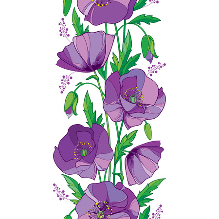 Elegance seamless pattern with outline purple Poppy flower, bud and green leaves on the white background. Vertical floral border with ornate contour poppies for summer design.