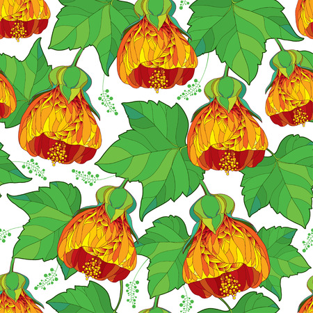 Seamless pattern with outline orange Abutilon or Indian mallow flower and ornate green leaf on the white background. Floral background in contour style with tropic Abutilon for summer design.