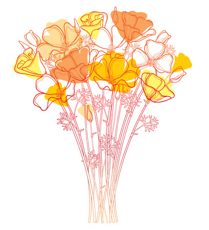 Bouquet with outline orange California poppy flower or California sunlight or Eschscholzia, leaf and bud isolated on white background. Ornate contour orange poppies for enjoying summer design.