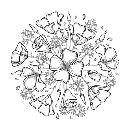 Round bouquet of outline California poppy flower or California sunlight or Eschscholzia, leaf and bud in black isolated on white. Contour ornate poppy for summer design or coloring book.
