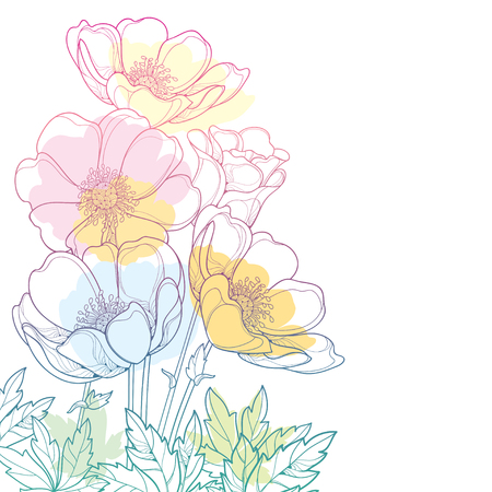 Hand drawing corner bouquet with outline Anemone flower or Windflower, bud and leaf in a pastel colored isolated on white background. Ornate contour Anemone for spring or summer design.