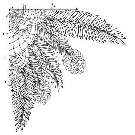 Corner branch of outline Sequoia or California redwood isolated on white background. Bunch of coniferous tree with pine and cones in contour style for floral design and coloring book.