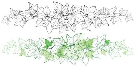Poziome obramowanie konspektu kiści Bluszcz lub winorośli Hedera. Kwiecisty liść bluszczu w czerni i pasteli na białym tle. Pnąca roślina konturowa do letniego projektu lub kolorowanka. Ilustracje wektorowe