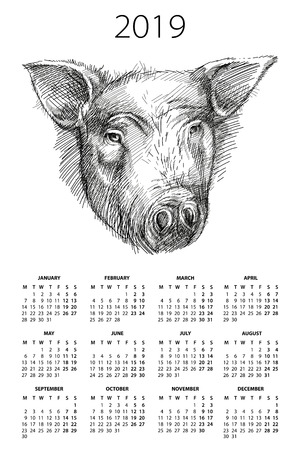 Wall calendar for 2019 year with sketch head of pig or boar in black on the white background. Week starts from Monday, English. Design print template with pig symbol of Chinese New Year. Illustration