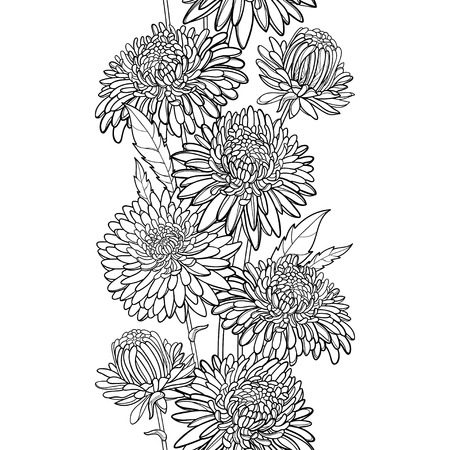 Monochrome vertical seamless pattern with outline Aster flower, bud and leaf in black on the white background. Ornate contour Aster for summer or autumn design and coloring book.