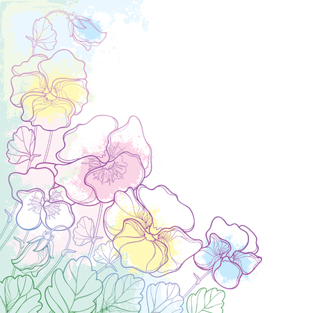 Pansy or Heartsease or Corinthia bouquet with outline. Contour Pansy flower bunch for summer design.
