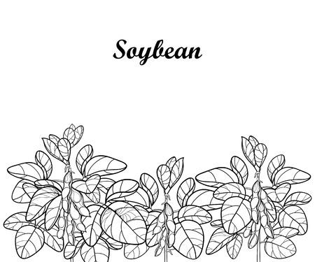 Soja ou fève de soja sur fond blanc. Bouquet de contour de légumineuses pour un livre de dessin ou de coloriage de nourriture végétarienne. Vecteurs